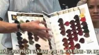 Huong dan nhuom Disc 1 clip4