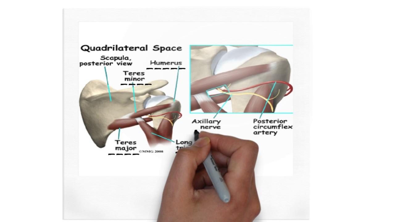 Quadrangular Space Youtube