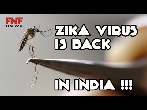 ZIKA VIRUS outbreak in INDIA | Gujarat government reported 3 cases to the WHO | Latest Top News