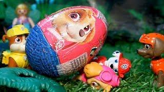 PATRULLA CANINA y la BÚSQUEDA de los HUEVOS! PAW PATROL toys PATRULLA CANINA juguetes PUPS UNBOXING