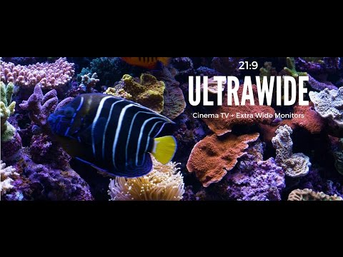 Ultrawide Screensaver for Cinema Displays 21:9 Aquarium