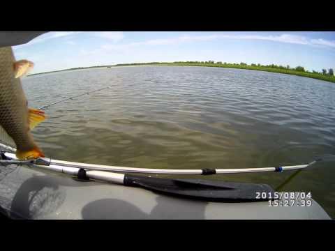 Волга Никольское  Сазан