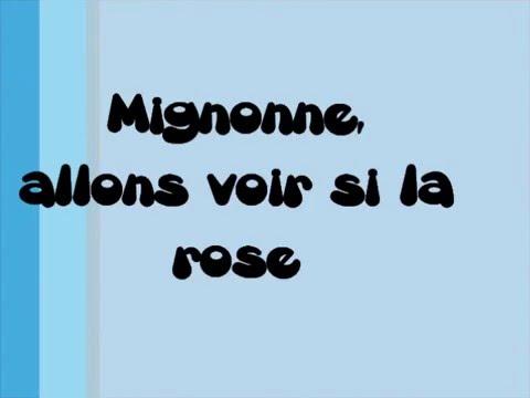Poésie - Mignonne allons voir si la rose (Pierre de Ronsard)