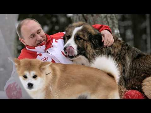 Любимая песня Путина 'Так скучала я...' - Как поздравить с Днем Рождения