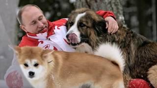 """Любимая песня Путина """"Так скучала я..."""""""
