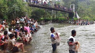 Menangkap ikan di sungai lubuk larangan pondok pudung tamiang kotanopan # Mandailing Natal