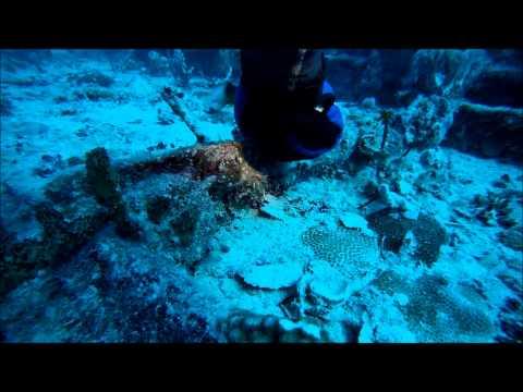 Cayman Salvage Master Wreck Dive