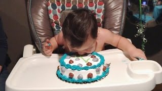 """Babies Diving Into Birthday Cakes Compilation"" 