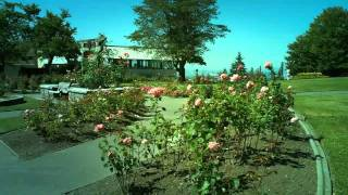Rose Gardens at Horizon Restaurant, Burnaby Mountain, B.C.