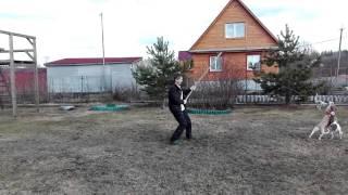 Тина и Руна — охота на зайца