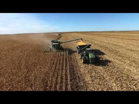 Brueggeman Brothers Corn #Harvest15
