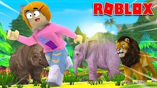 Roblox Escape The Safari With Molly