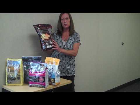 learn-about-grain-free-dog-food