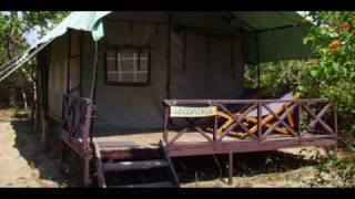 India Uttaranchal Almora Camp Forktail Creek India Hotels India Travel Ecotourism Travel To Care