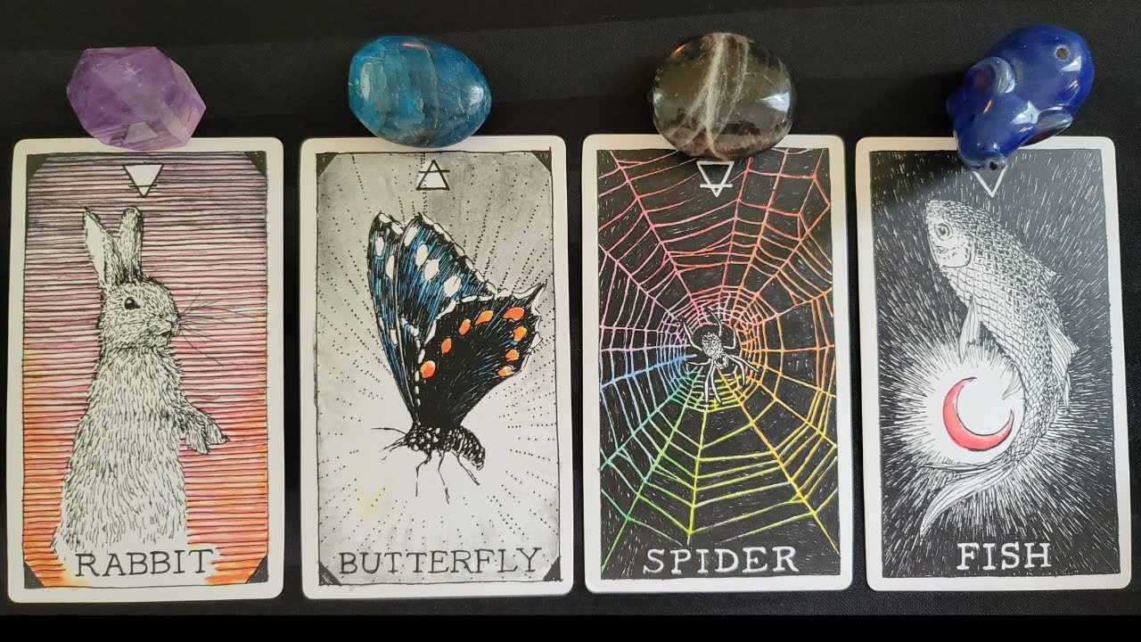 🔮 How are they FEELING about you right now? 💖💕💞 PICK A CARD Weekly Check In Timeless Love Tarot