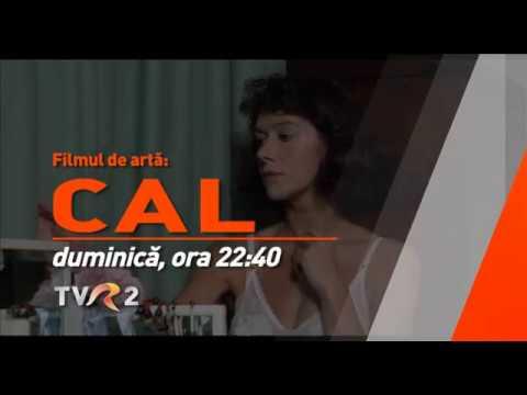 Cal - Filmul de Artă la TVR 2