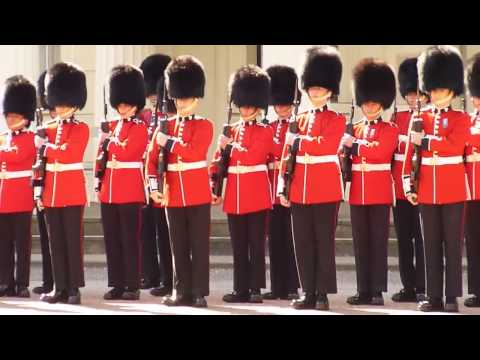 1 St  Battalion Irish Guards