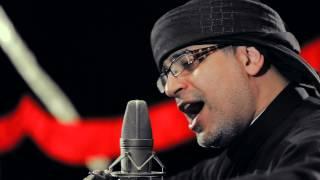 مقطع من قصيدة كربلاء ثورة | نزار القطري