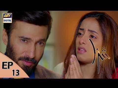 Shiza Ep 13 - 9th June 2017 - ARY Digital Drama