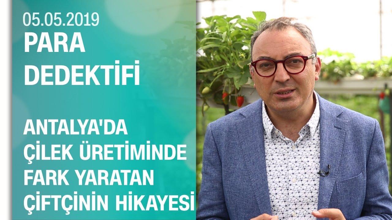 Antalya'da topraksız çilek üretimiyle fark yaratan çiftçilerin hikayesi - Para Dedektifi 05.05.2019