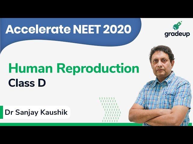 NEET 2020 | Class 15 | Zoology | Human Reproduction By Dr. Sanjay Kaushik (MBBS)
