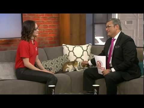 Kaetlyn Osmond on Breakfast Television