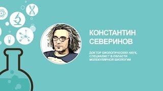 видео: [ОтУС] Летняя школа 2014: Константин Северинов