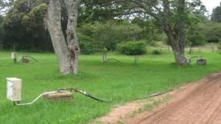 3.0 Bedroom Farms For Sale in Port Alfred, Port Alfred, South Africa for ZAR R 5 850 000