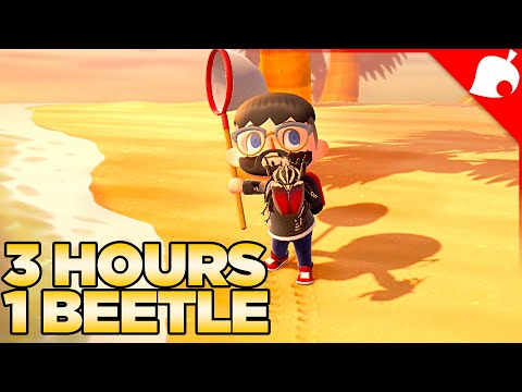 I Spent 3 Hours of my Life trying to Catch a Beetle in Animal Crossing New Horizons 41
