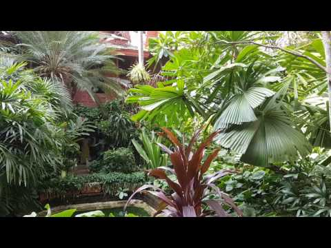Jim Thompson House - Tropical Garden in Siam (Bangkok, Thailand)