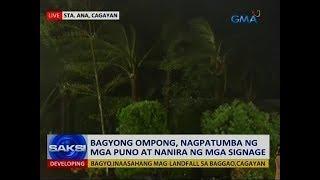 Saksi: Bagyong Ompong, nagpatumba ng mga puno at nanira ng mga signage