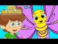 Download Mariposita canción infantil las mejores rondas infantiles Los Amiguitos canciones infantiles MP3 song and Music Video