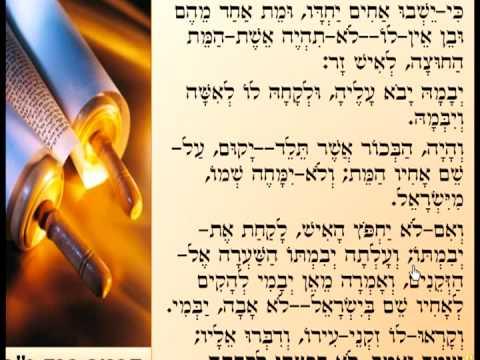 תלמוד בבלי - גמרא - בצורה שלא הכרתם שיעור Talmud Learning Tora4all 4