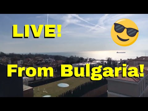 ? LIVE: 2020 GT500, 2020 Toyota Supra Thoughts | From Bulgaria
