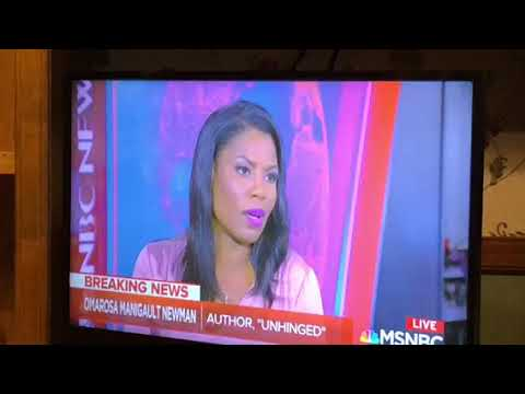 Omarosa Says Trump Knew About Clinton Emails On MSNBC With Katy Tur