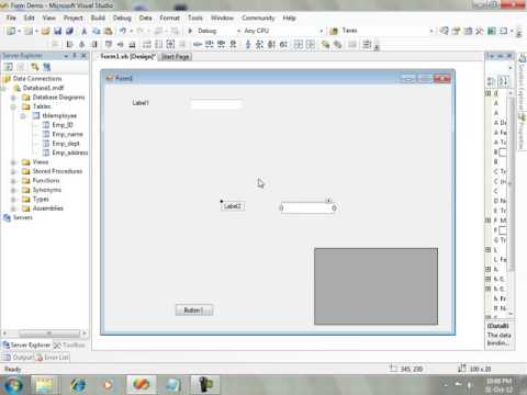 Employee Form Insert Update Delete with navigation Visual Basic 2010 VB