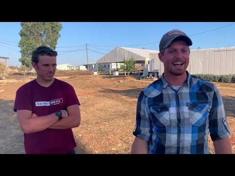 "Josh and Josiah: ""Come and help rebuild the biblical land of Samaria"""