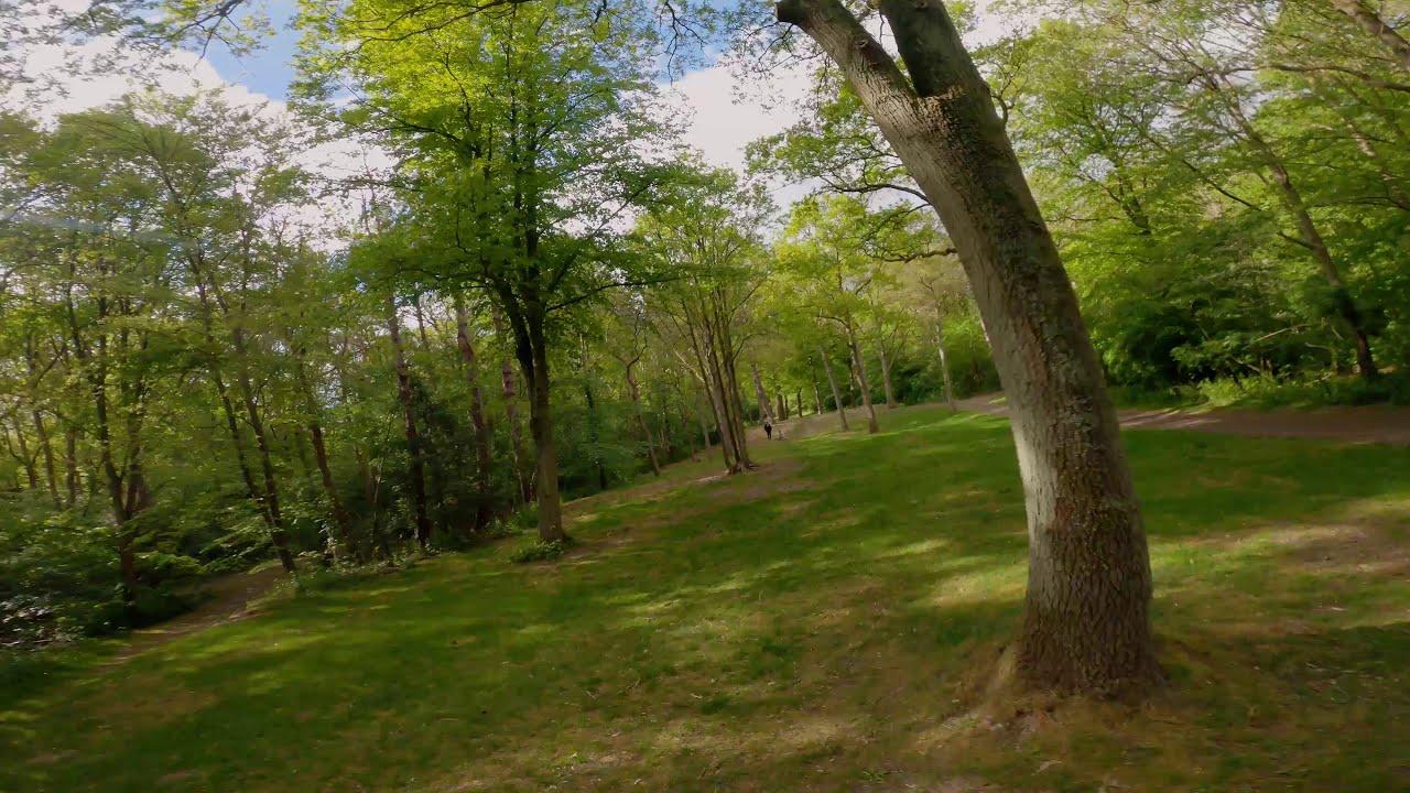 Pack #1 - Door het bos ! - (Cinematic FPV GoPro Hero 8) фото