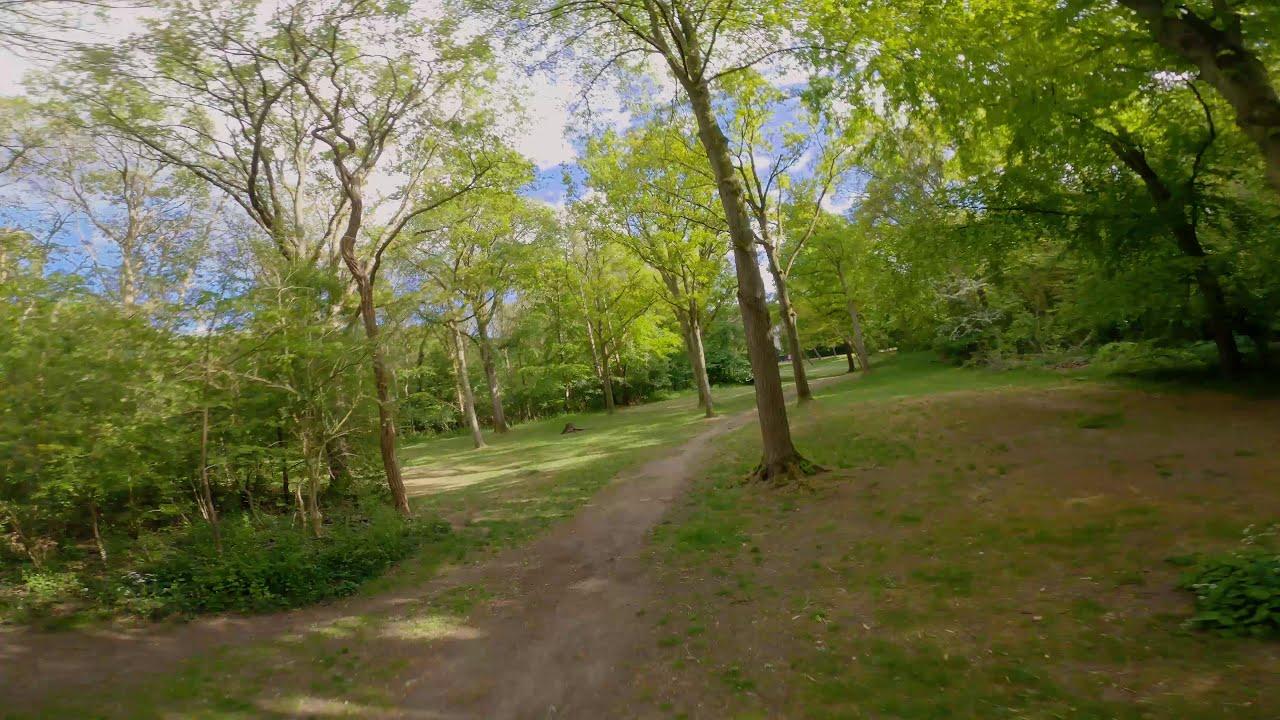 Pack #1 - Door het bos ! - (Cinematic FPV GoPro Hero 8) фотки