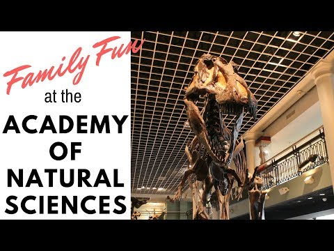 Family Fun Visit to the Academy of Natural Sciences, Visit to Dinosaur Museum