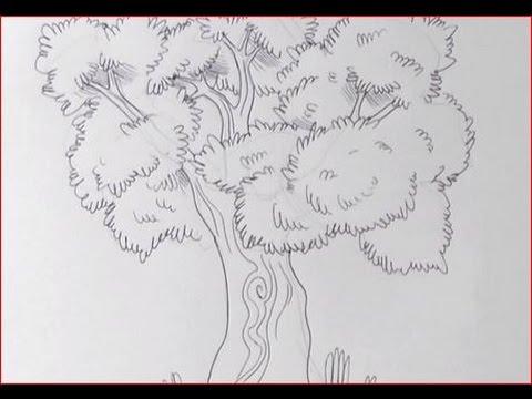 Disegnare Un Albero A Matita Youtube