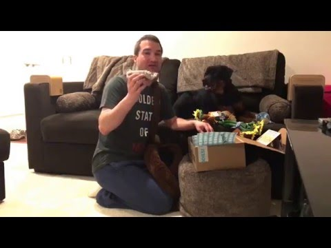 barkbox-large-dog-extra-toy-may-2016-#pepper-#rottweiler-#puppy
