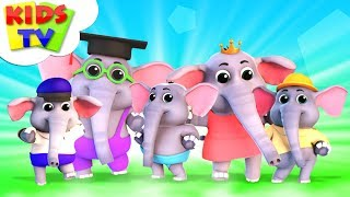 Five Little Elephants | Junior Squad Cartoons | Nursery Rhymes For Children - Kids Tv