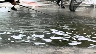 видео: Рыбалка Монстры из лужи.... Горе рыбаки с удачей...