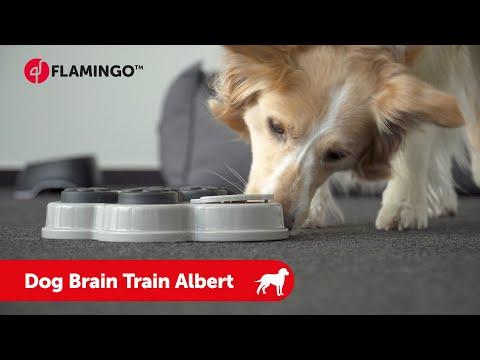 dog-brain-train-albert---flamingo-pet-products