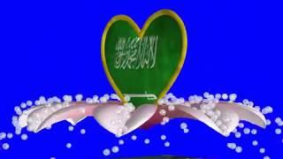 Saudi Arabia Flag Green Screen Effects -Saudi Arabia Flag Animation 3D Effects Free Download - no 31