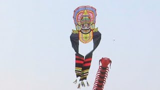 Гигантские медведи и осьминоги на фестивале воздушных змеев в Индии