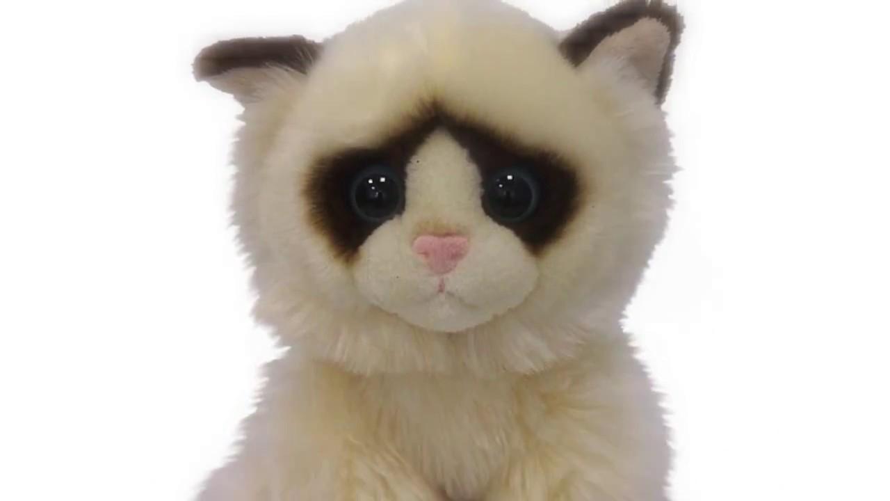 Рыжий кот! Коллекция мягких игрушек c уникальными большими глазами .