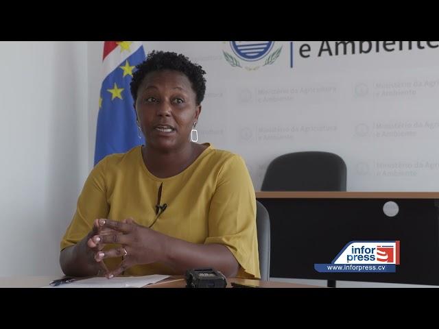 Secretária executiva do SNSAN defende fortalecimento da agricultura familiar na garantia da seguranç