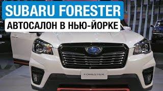Subaru Forester 2018 // Павел Блюденов